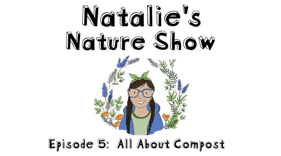 Episode 5: All About Compost